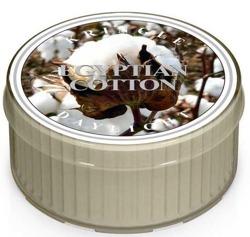 Kringle Candle Daylight - Świeczka Egyptian cotton