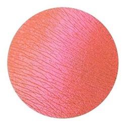 Tammy Tanuka Pigment do powiek 362 1ml