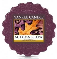 Yankee Candle Wosk Autumn Glow